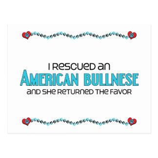 I Rescued an American Bullnese (Female Dog) Postcard