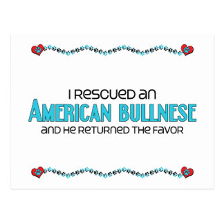 I Rescued an American Bullnese (Male) Dog Adoption Postcard