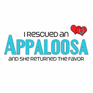 I Rescued an Appaloosa Female Horse Cut Out