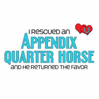I Rescued an Appendix Quarter Horse (Male Horse) Photo Sculpture Magnet