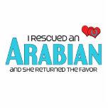 I Rescued an Arabian (Female Horse) Cut Outs