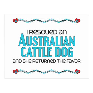 I Rescued an Australian Cattle Dog (Female Dog) Postcard