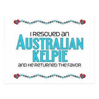 I Rescued an Australian Kelpie (Male Dog) Postcard
