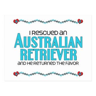 I Rescued an Australian Retriever (Male Dog) Postcard