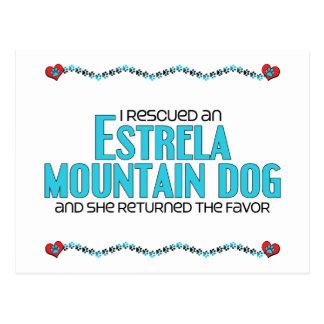 I Rescued an Estrela Mountain Dog (Female Dog) Postcard