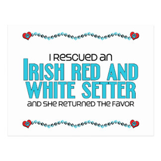 I Rescued an Irish Red and White Setter (Female) Postcard