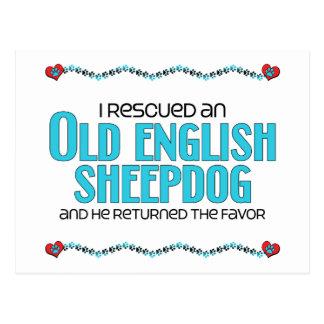 I Rescued an Old English Sheepdog (Male Dog) Postcard