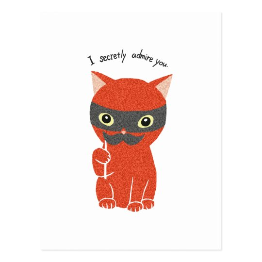 I secretly admire you Funny Cute Cat Postcard