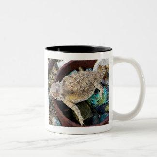 """""""I see a lizard on a rock"""" Two-Tone Coffee Mug"""