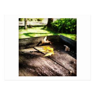 I see fall... postcard