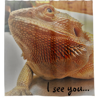 I see you Funny Orange Bearded Dragon Picture Shower Curtain
