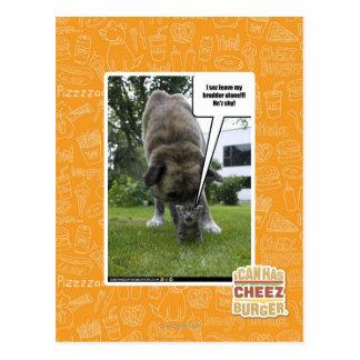 I sez leave my brudder alone postcard