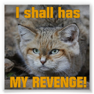 I Shall Has My Revenge Large Poster