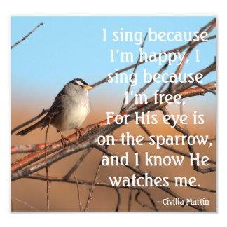 I sing because I'm happy Sparrow Photo Art