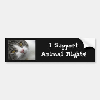 I Support Animal Rights Bumpersticker Car Bumper Sticker