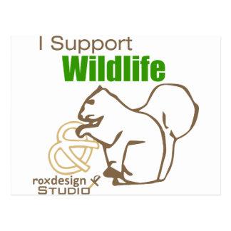 I Support Wildlife Postcard