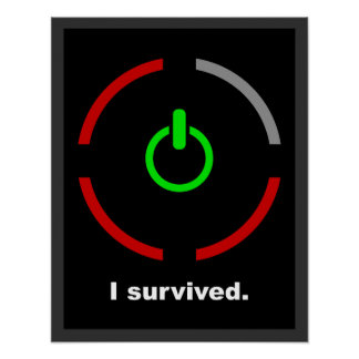 I Survived $17.95 Graphic Art Wall Poster