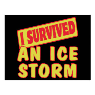 I SURVIVED AN ICE STORM POSTCARDS