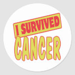 I SURVIVED CANCER STICKERS