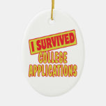 I SURVIVED COLLEGE APPLICATIONS CERAMIC OVAL DECORATION