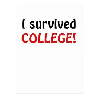 I Survived College Postcard