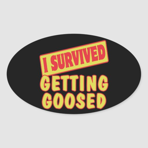 I SURVIVED GETTING GOOSED STICKERS