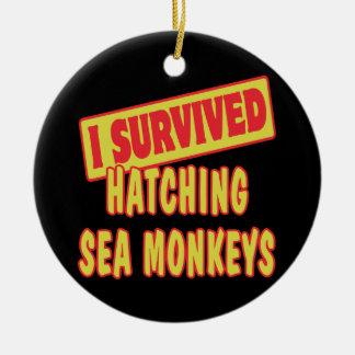 I SURVIVED HATCHING SEA MONKEYS ROUND CERAMIC DECORATION