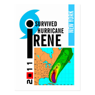 I Survived Hurricane Irene New York Postcard