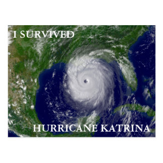 I SURVIVED HURRICANE KATRINA POSTCARD