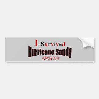 I Survived Hurricane Sandy Bumper Sticker