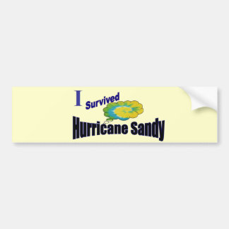 I Survived Hurricane Sandy Bumper Sticker