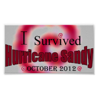 I Survived Hurricane Sandy Poster