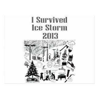 I Survived Ice Storm 2013 Post Cards