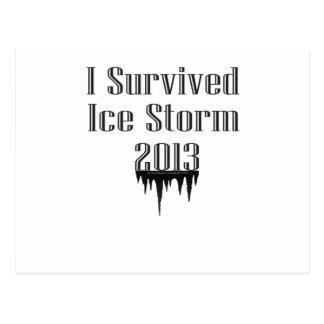 I Survived Ice Storm 2013 Postcard