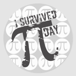 I Survived Pi Day Stickers - Funny Pi