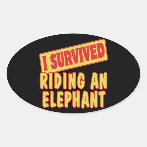 I SURVIVED RIDING AN ELEPHANT STICKER