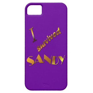 I survived Sandy 3 Case For The iPhone 5