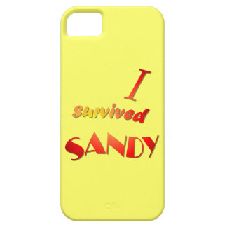 I survived Sandy 4 Case For The iPhone 5
