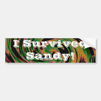 I Survived Sandy! Bumper Sticker