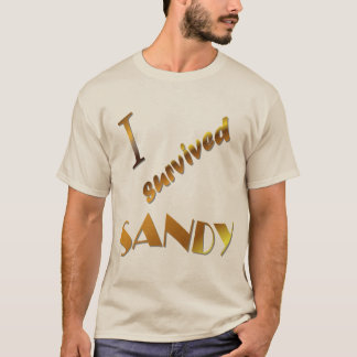 I survived Sandy long sleeve T-Shirt