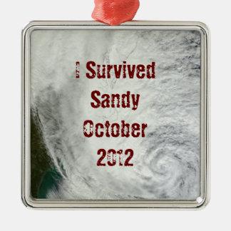 I Survived Sandy Ornament