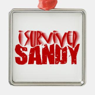 i survived SANDY Silver-Colored Square Decoration