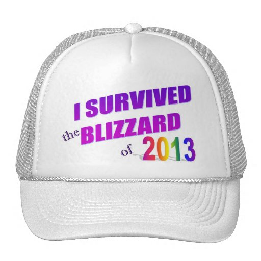 I Survived the Blizzard of 2013 Hat