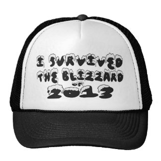 I Survived The Blizzard of 2013 Trucker Hat