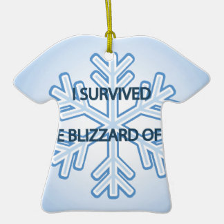 I survived the blizzard of 2014 snowflake ceramic T-Shirt decoration