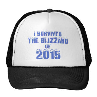 I Survived The Blizzard Of 2015 Hats