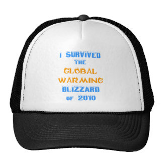 I Survived the Global Warming Blizzard of 2010 Cap
