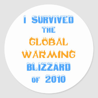 I Survived the Global Warming Blizzard of 2010 Round Sticker