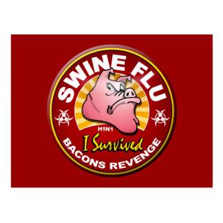 I Survived The Swine Flu - H1N1 Post Cards