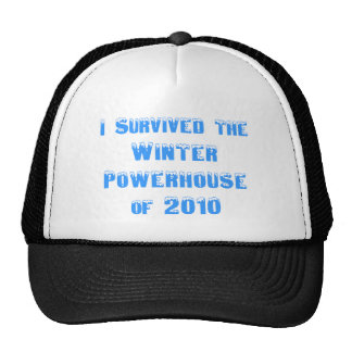 I Survived the Winter Powerhouse of 2010 Hats